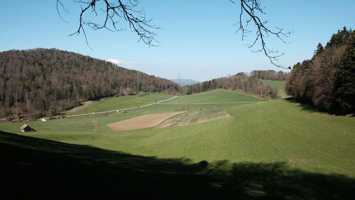 Über die Wiese zu einem Kantonsgrenzstein im Acker