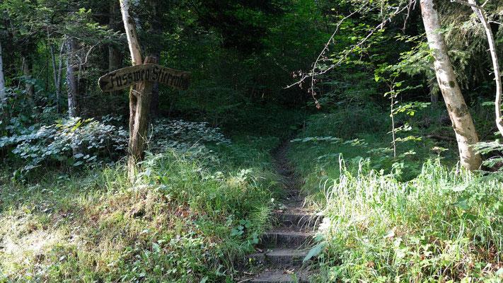 Steiler Aufstieg zum Riedbergchopf