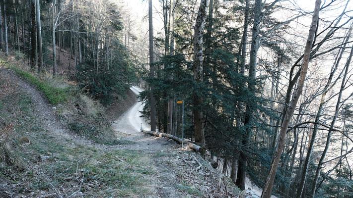 Der Wasserfallenweg. Der Grenzverlauf geht nach links Richtung Gondelbahnbergstation