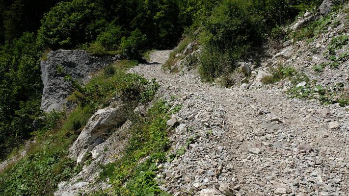 Weitere Impressionen vom Alpweg.