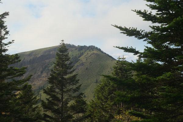 四阿山のガスは取れないので根子岳に向かいます。