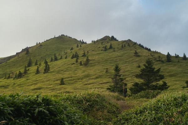 草原に包まれた根子岳。