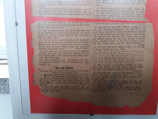 Nach der Zerstörung der Kirche fand der damalige Pfarrer Busch dieses einzige Blatt aus der verbrannten Altarbibel. - Hesekiel 34:16 wurde Trost und Wegweiser.
