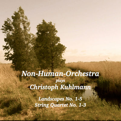 Non-Human-Orchestra - Landscapes