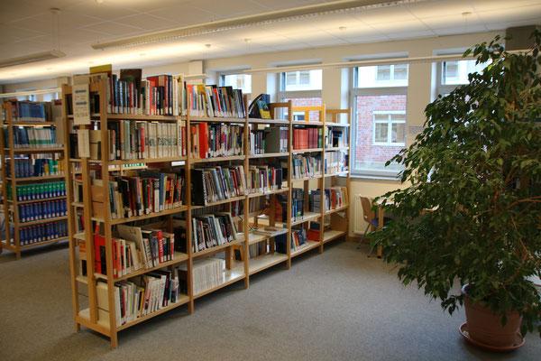 Fächer-Regale und Lerninseln