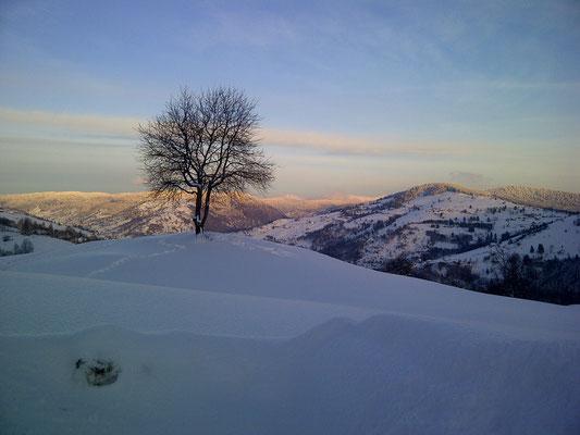 Vue hivernale sur la ferme à la Bresse