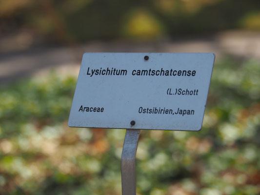 BotanischerGarten_balanceYou!©ChristinaBecker