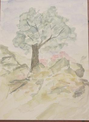 Cinque Terre Nr. 183 25x34