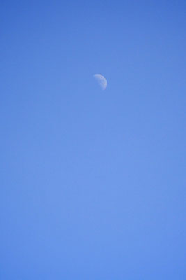 Half-Moon in daylight