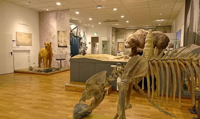 Deutsches Höhlenmuseum Dechenhöhle Iserlohn, geplant von Dipl. Ing. Günter Müller aus Schwerte