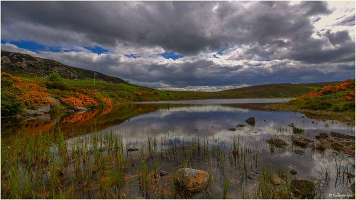 Schottland 2016