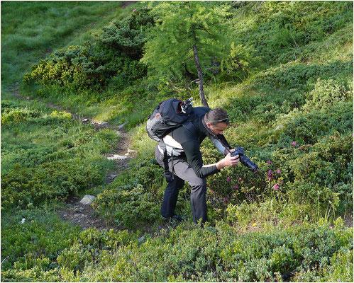 Anenhütte Paparazzi 19.06.2014