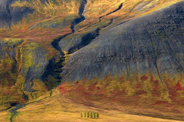 """Herbst in Island"""