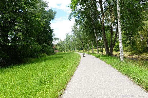 Der Weg an der Riss entlang - leider aber auch mit vielen Velofahrern