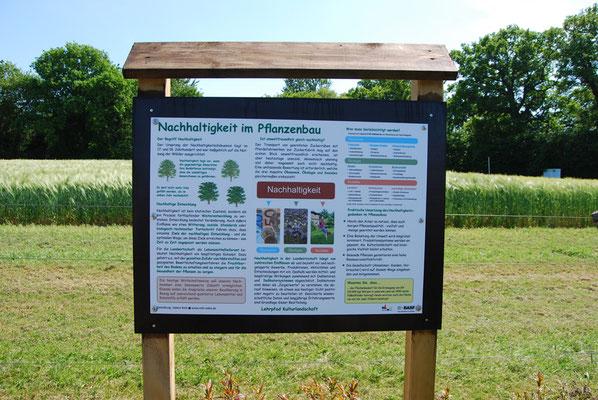 Infotafel auf dem Lehrpfad Bothkamp: Nachhaltigkeit im Pflanzenbau