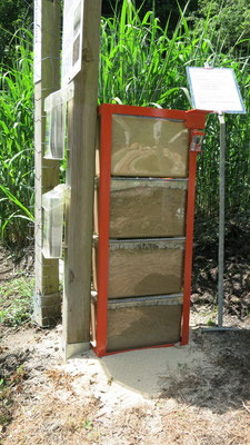 Mitmachobjekt zu den Organismen im Boden