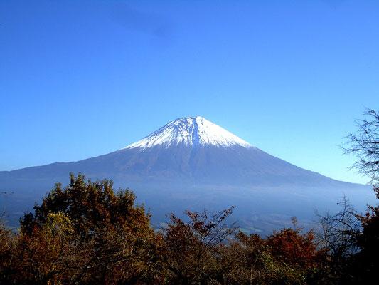 途中に見える富士山