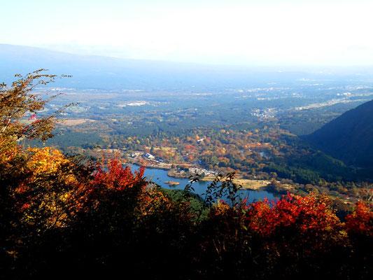 上から見下ろす田貫湖
