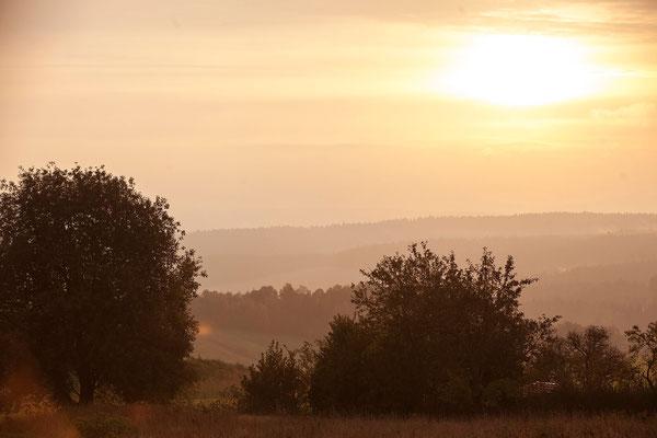 Umwelt- und Naturschutz wollen wir möglichst weitreichend in den Betriebsalltag integrieren. 2016 wurde daher eine Naturschutzbeauftragte für das Hofgut eingestellt.