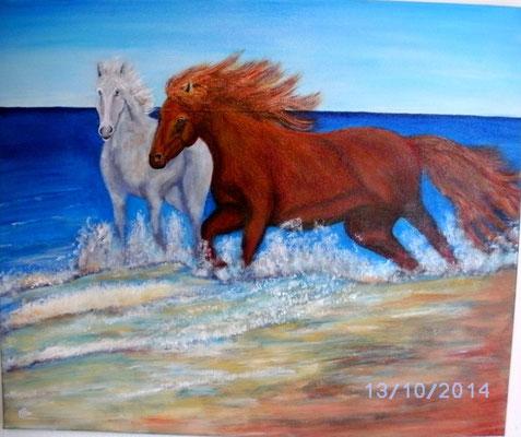 Wilde Pferde 40 x 60 cm