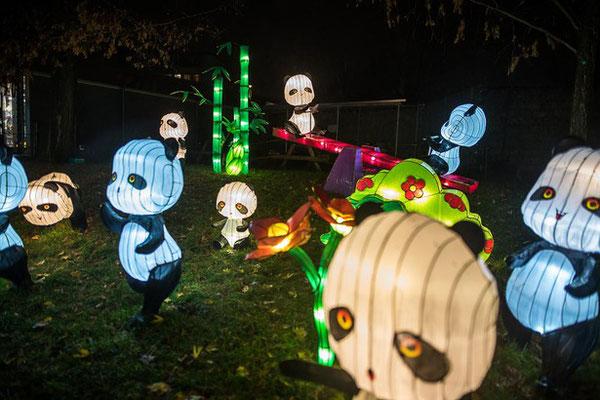 keine Kung Fu Pandas beim Lichtfestival Köln