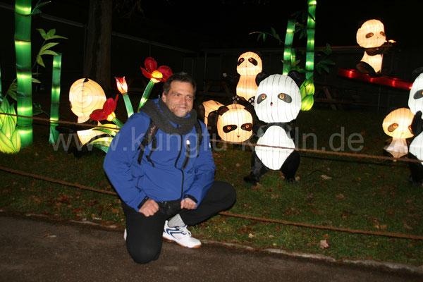 Pandagruppe