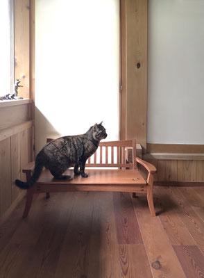 猫のためのスタイリッシュベンチ、チェリ-。八ヶ岳の家具工房ZEROSSOの創作家具。