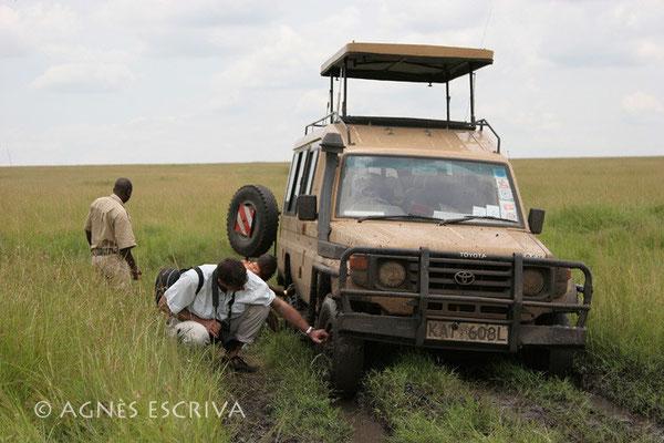 Embourbement - Masaï Mara, février 2007