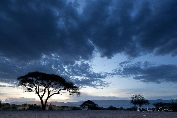 Kenya - décembre 2014