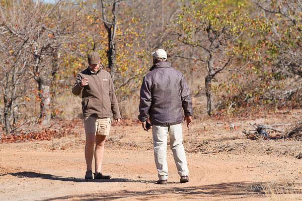 Timbavati - Afrique du Sud, juillet 2015