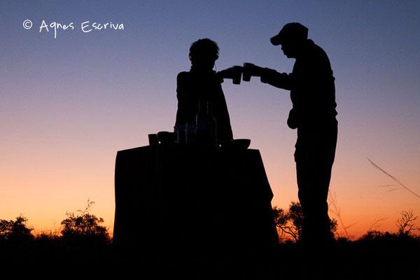 Apéro ! Timbavati  - Afrique du Sud, juin 2011