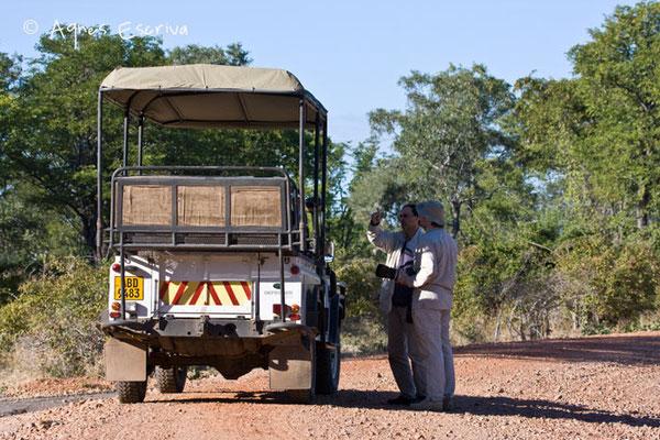 4x4 à South Luangwa - Zambie mai 2009