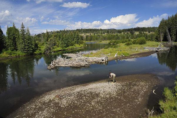Parc de Grand Teton, Etats-Unis, Août 2013