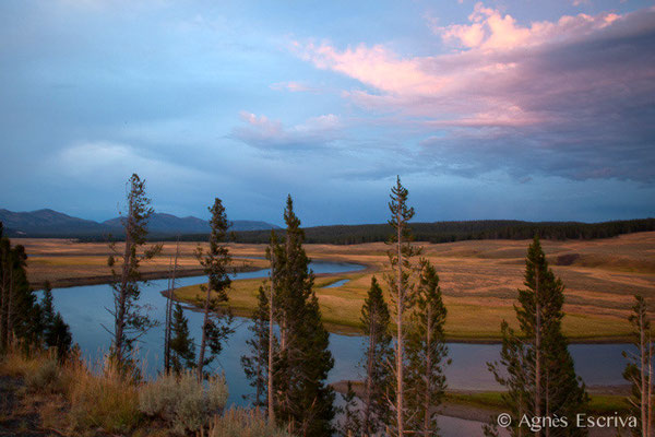 Yellowstone river dans la Hayden Valley, Parc de Yellowstone