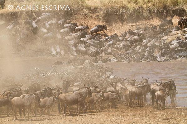 Crossing - Kenya août 2010