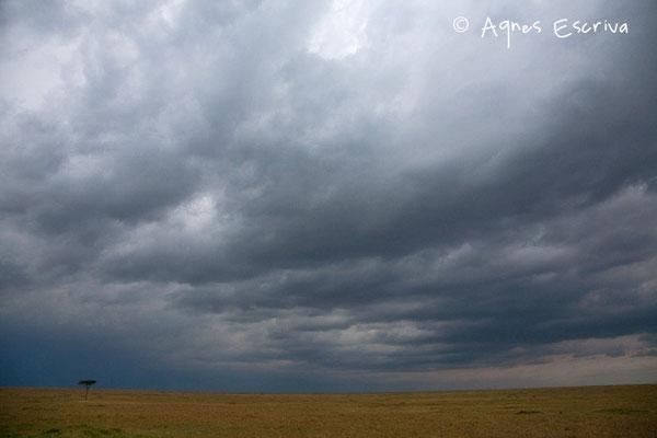 Kenya - février 2011