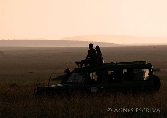 Au coucher du soleil - Masaï Mara, février 2007