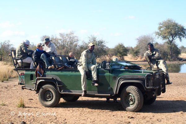 Timbavati - Afrique du Sud août 2006