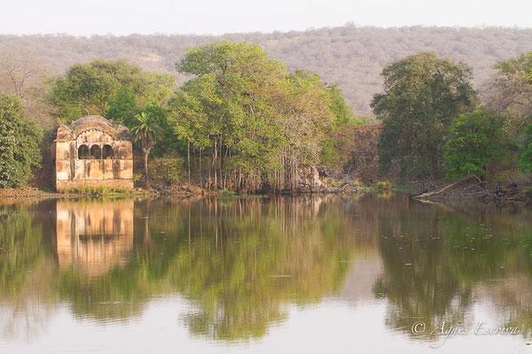 Lac de Rajbagh