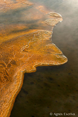 Upper Geyser Basin, Parc du Yellowstone