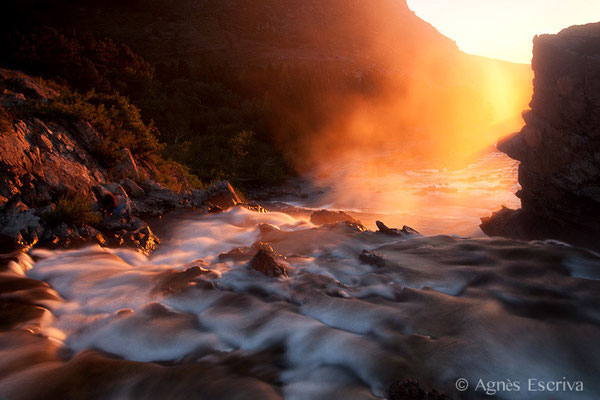 Swifcurrent creek, Glacier National Park