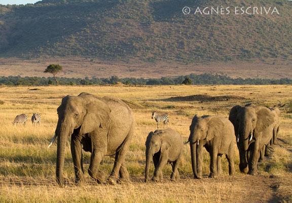 La file indienne - Kenya août 2010