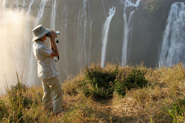 Chutes Victoria - Zambie août 2007