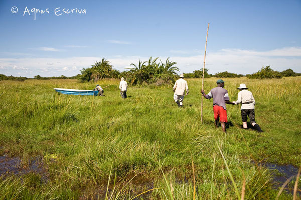 Peu d'eau ! - Zambie mai 2009