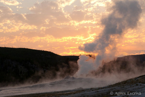 Old Faithful Geyser, Parc du Yellowstone