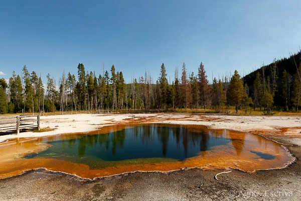 Biscuit Basin, Parc du Yellowstone