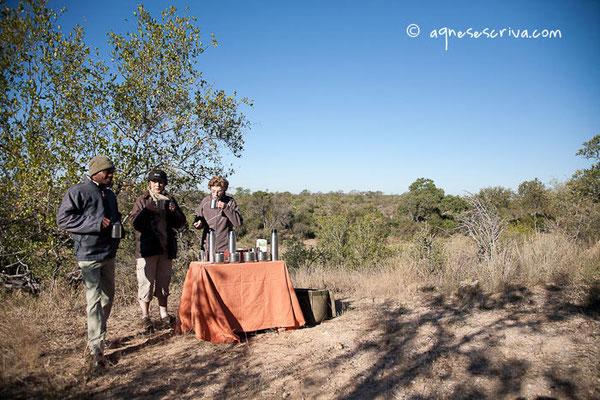Pause café -Timbavati  - Afrique du Sud, juin 2011