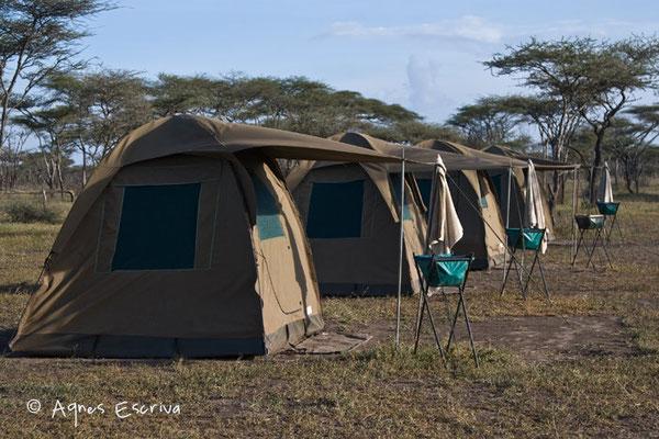 Campement à Ndutu  - Tanzanie février 2008