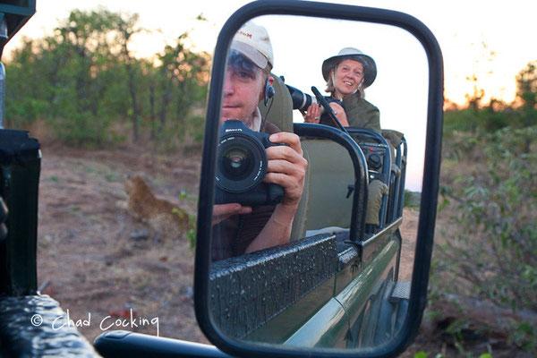 En attend que le léo bouge... - Timbavati  - Afrique du Sud, juin 2011