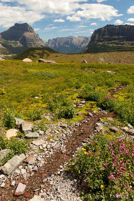 Hidden Lake Nature trail, Logan Pass, Glacier National Park